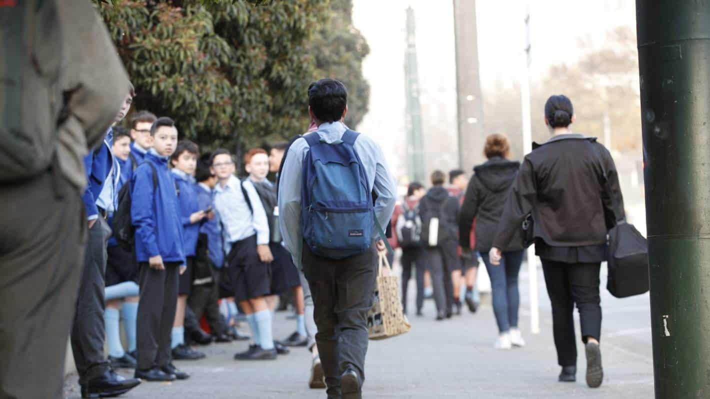 Auckland schools re zoning